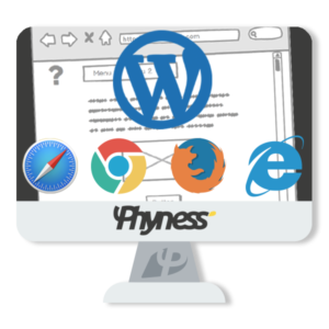 Services phyness creation sitios web 2